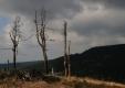 Jiraskova cesta - pod Tetrevecem